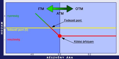 mi az opció az ooo részvényeivel)