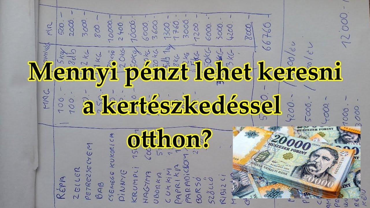 hogyan lehet pénzt keresni otthon 500)