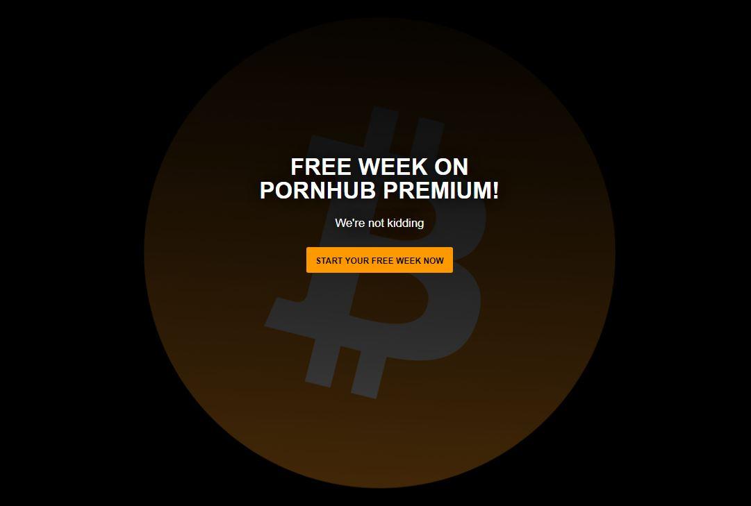 Rájöttek, hogy konkrétan mi mozgatja a bitcoin árfolyamát
