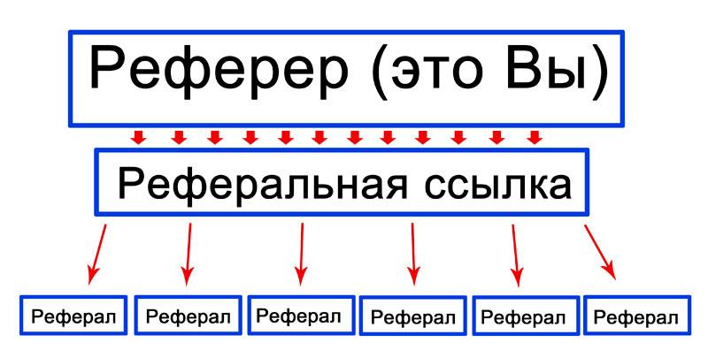 jövedelem a hálózatban)