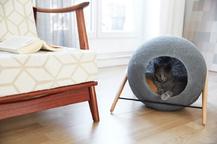 design macska lehetőségek