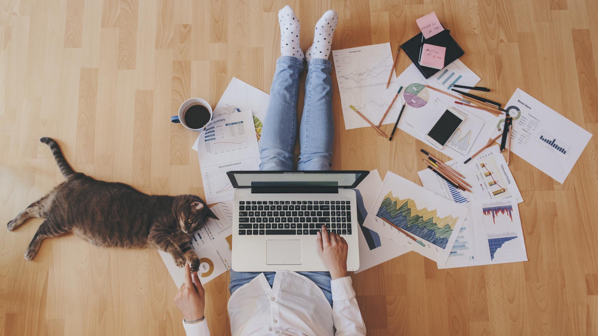 otthoni munkavégzés az interneten keresztül befektetési értékelések nélkül)